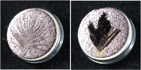 Feathers side-by-side, the left one appears shiny gold and the right appears matte black.